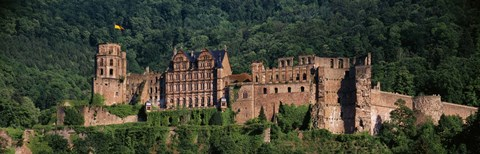 Framed Castle on a hillside, Heidelberg, Baden-Wurttemberg, Germany Print