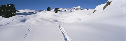 Framed Footprints on a snow covered landscape, Alps, Riederalp, Valais Canton, Switzerland Print
