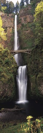 Framed Waterfall in a forest, Multnomah Falls, Columbia River Gorge, Multnomah County, Oregon, USA Print