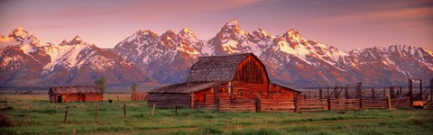 Framed Barn Grand Teton National Park WY USA Print