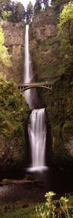 Framed Waterfall in a forest, Multnomah Falls, Columbia River Gorge, Oregon, USA Print