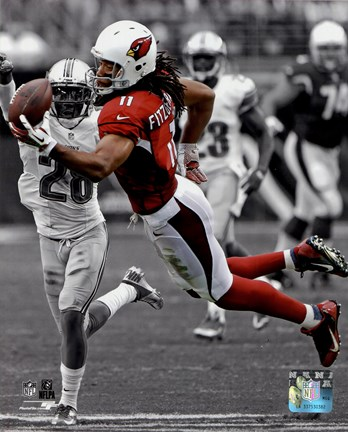 Framed Larry Fitzgerald 2013 Spotlight Action Print