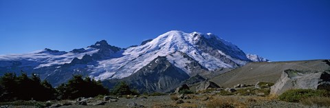 Mountain covered with snow, Mt Rainier, Mt Rainier National Park, Pierce County, Washington State, USA by Panoramic Images