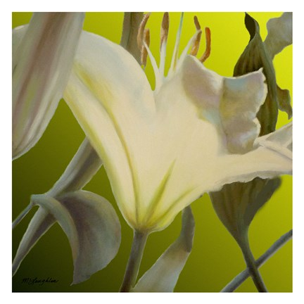 Framed Lily Green Print