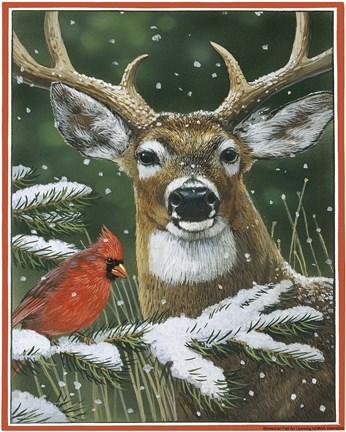 Deer With Cardinal Fine Art Print By William Vanderdasson