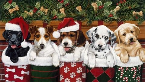 Christmas Puppies.William Vanderdasson Christmas Puppies