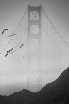 Framed Golden Gate Pier and Birds II Print