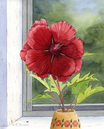 Hibiscus by Maureen Mccarthy