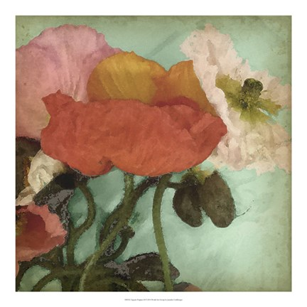 Framed Aquatic Poppies II Print