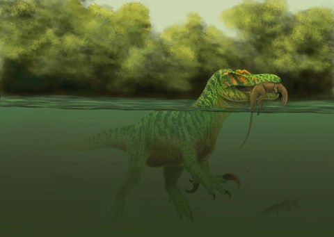 A Baryonyx escapes swimming from a brawl with a Hypsilophodon in his mouth by Alvaro Rozalen