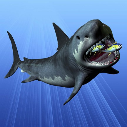 A Cenozoic Era Megalodon devours two swimming tuna by Corey Ford