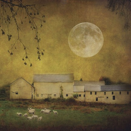 Framed Sheep Under a Harvest Moon Print