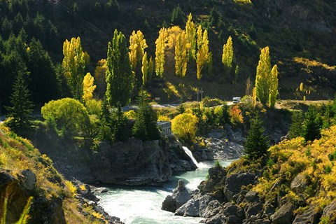 Framed Autumn Colours, Kawarau River, Kawarau Gorge, South Island, New Zealand Print