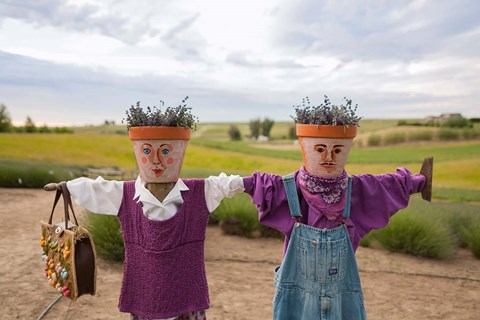 Framed Scarecrows at a lavendar farm in SE Washington Print