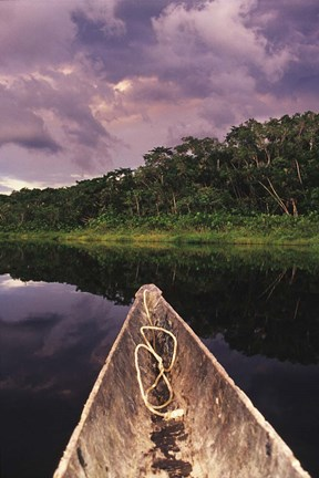Framed Paddling a dugout canoe on Lake Anangucocha, Yasuni National Park, Amazon basin, Ecuador Print