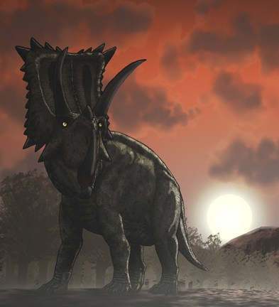Framed Coahuilaceratops Walking through a Cretaceous Sunset Print