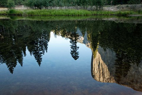 Framed Reflection of El Capitan in Mercede River, Yosemite National Park, California - Horizontal Print
