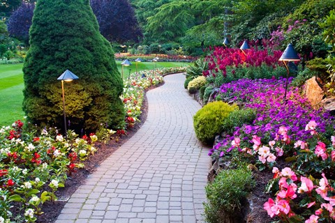 Path and flower beds in butchart gardens victoria british columbia framed path and flower beds in butchart gardens victoria british columbia canada print thecheapjerseys Image collections