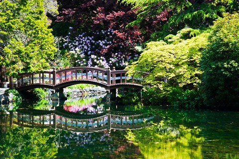 Framed British Columbia, Vancouver, Hately Gardens bridge Print