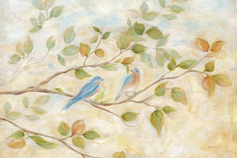 Framed Blue Birds Branch Print