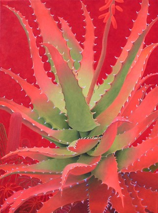 Framed Red Agave Print