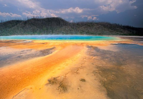 Framed Grand Prismatic Geyser, Yellowstone National Park, Wyoming Print