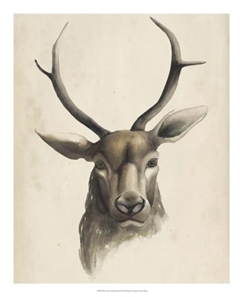Framed Watercolor Animal Study I Print
