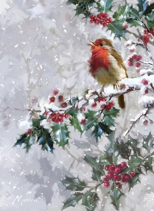 Robin On Holly 2 Fine Art Print By The Macneil Studio At