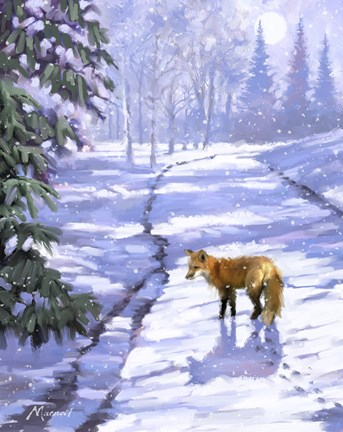Fox In Snow Fine Art Print By The Macneil Studio At