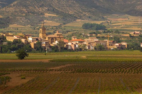 Framed Village of Brinas surrounded by Vineyards, La Rioja Region, Spain Print