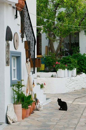 Framed Street View with Black Cat, Manolates, Samos, Aegean Islands, Greece Print