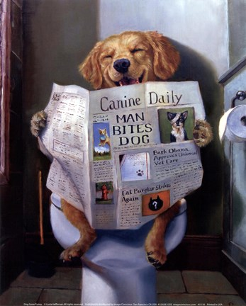 Dog Gone Funny Fine Art Print By Lucia Heffernan At