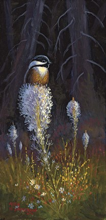 Beargrass Chickadee by Allen Jimmerson