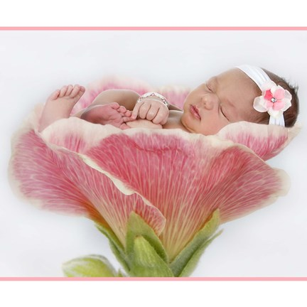 Framed Baby In Pink Bloom Print