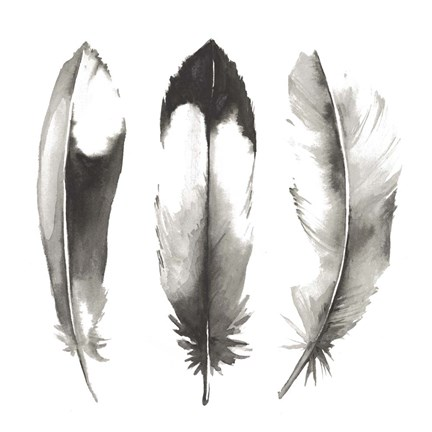 Framed Watercolor Feathers II Print