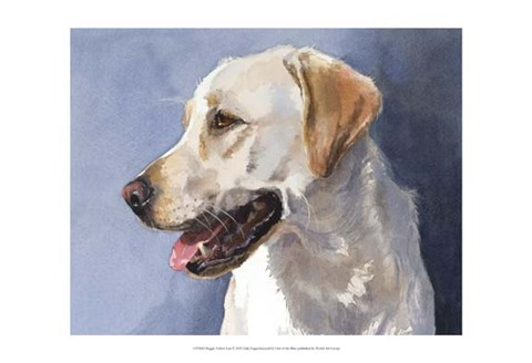 Framed Reggie Yellow Lab Print