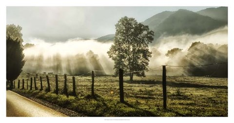 Sunrise in Cades Cove by Danny Head