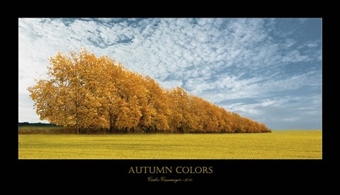 Framed Autumn Colors 1 Print