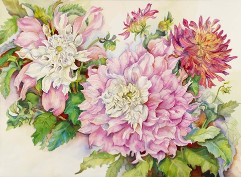 Framed Blushing Dahlias Print