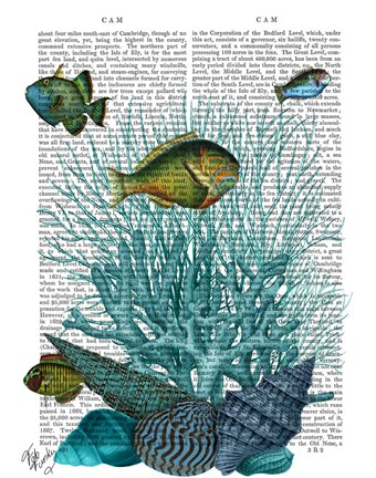 Framed Fish Blue Shells and Corals Print