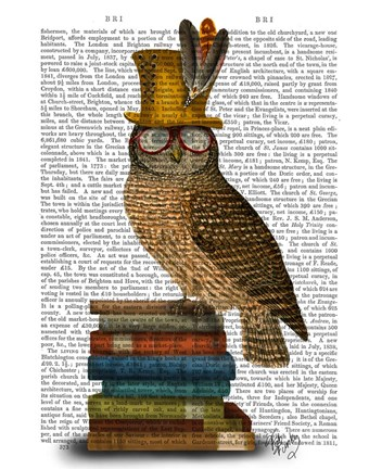 Framed Owl On Books Print