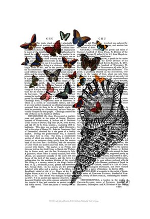 Framed Conch Shell and Butterflies Print