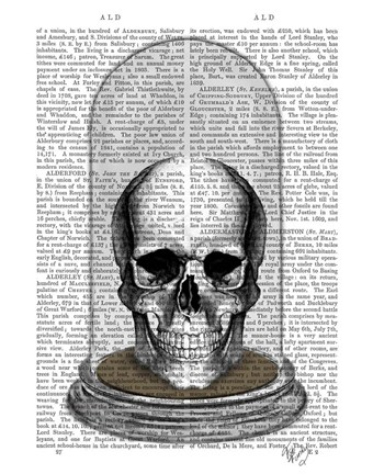 Framed Skull In Bell Jar Print