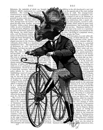 Framed Triceratops Man on Bike Dinosaur Print