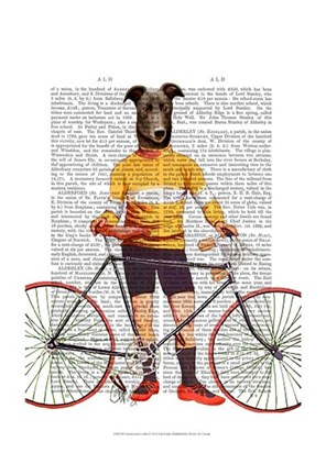 Framed Greyhound Cyclist Print