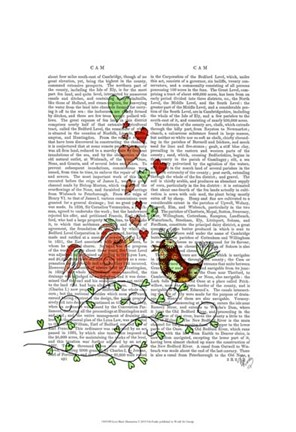 Framed Love Birds Illustration Print