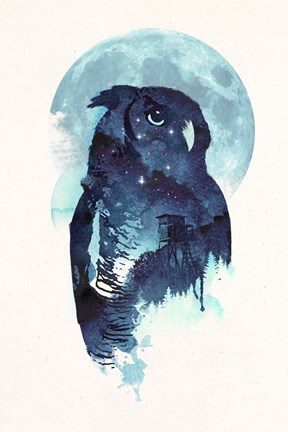 Framed Midnight Owl Print