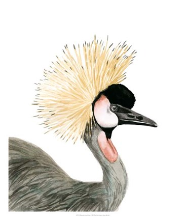 Framed Watercolor Crested Crane Print
