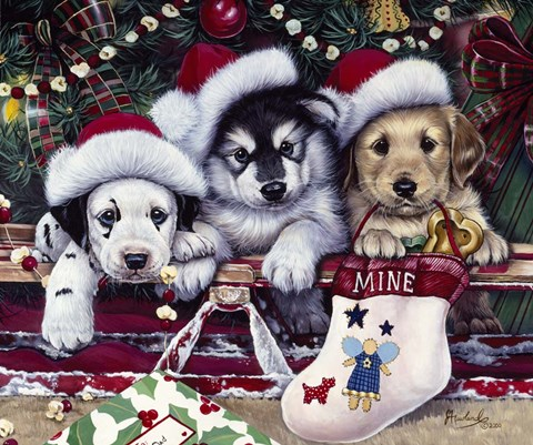 A Tail Wagging Christmas Fine Art Print By Jenny Newland