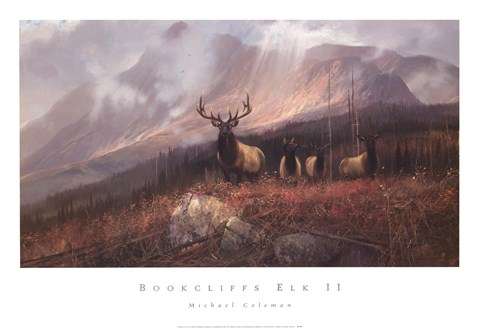 Framed Bookcliffs Elk II Print